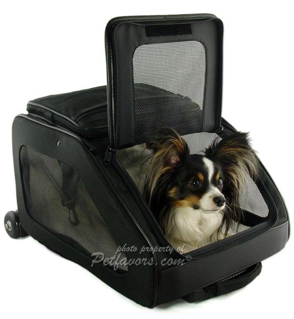 Rio Pet Carrier