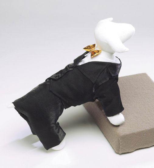 Tuxedo with Gold Bowtie