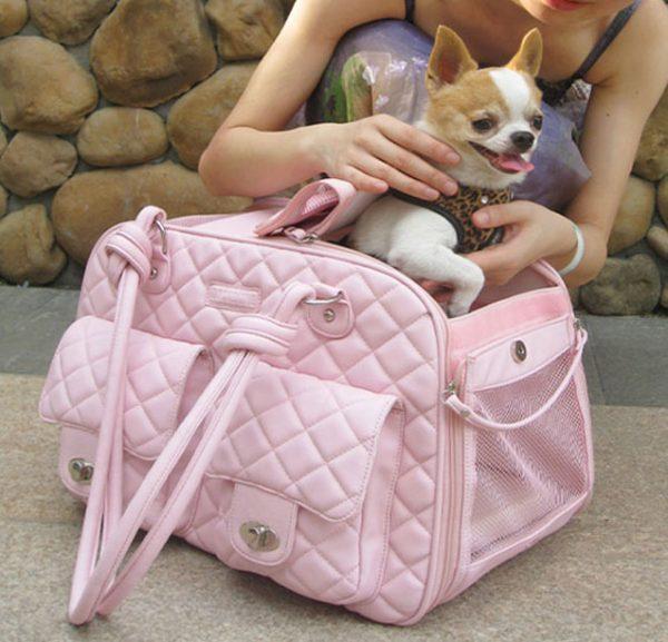 Abbie Pet Carrier