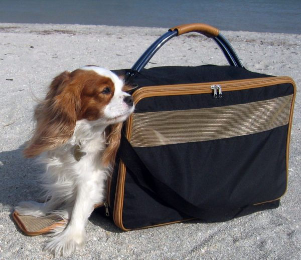 Bark-n-Bag Nylon Pet Carrier
