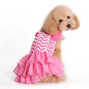 Pink Chevron Dog Dress