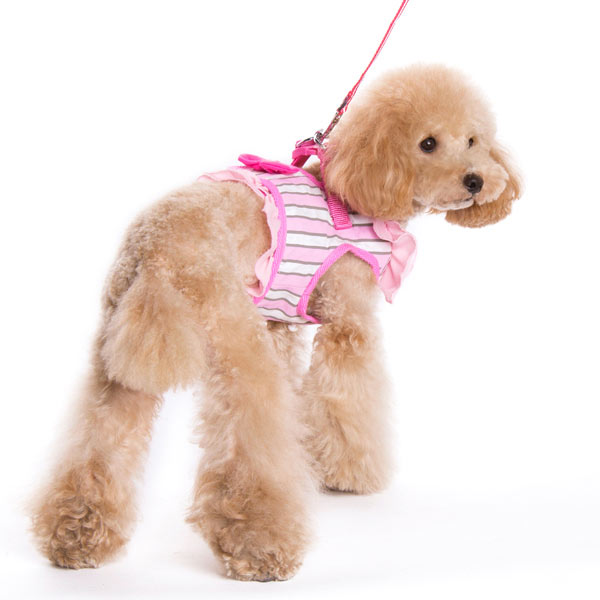 SnapGO Sweetbow Harness Vest