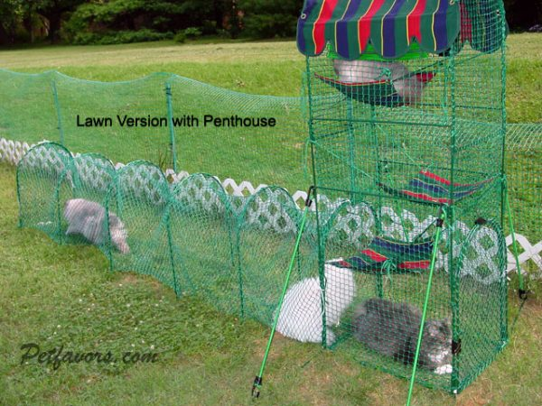 Kittywalk Lawn Version and Penthouse Cat Enclosures