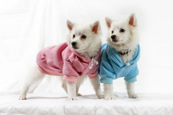 Soft Hoodies - Pink and Blue