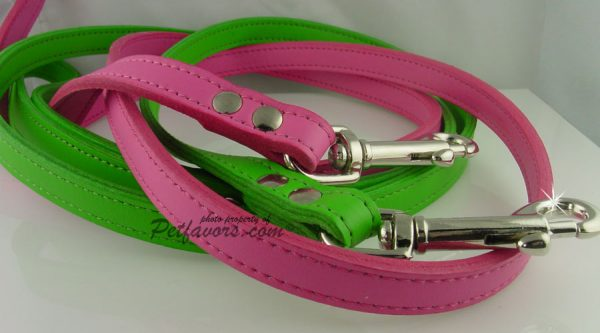 Soft Leather Leashes with Silver Hearts