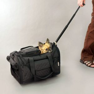 Deluxe Wheeled Pet Carrier