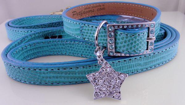 """Lizard"" Collar & Leash Set - Blue"