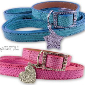 """Lizard"" Collar & Leash Set - Pink and Blue"